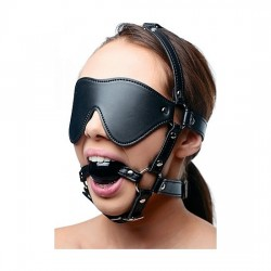 EYE MASK HARNESS WITH BALL GAG